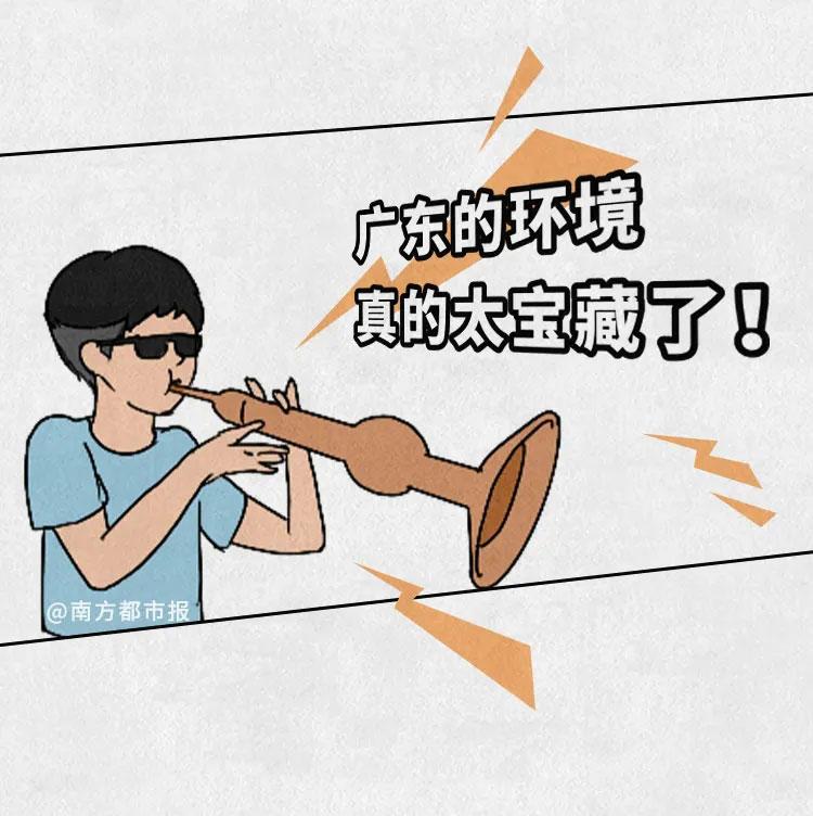 广东环境我来吹,冲鸭广东环境1