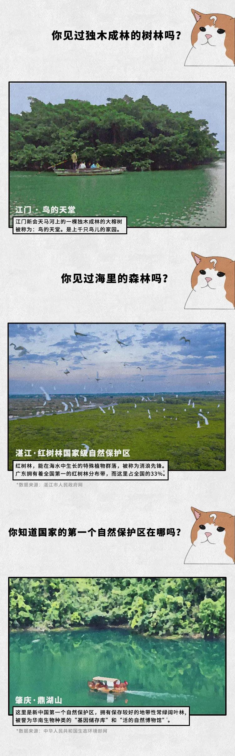 广东的自然保护区